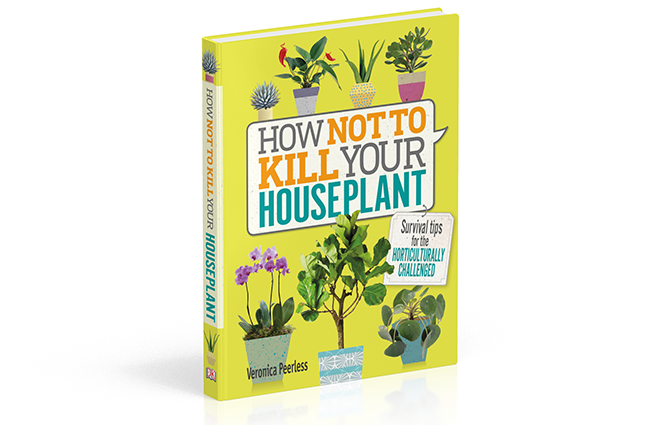 How To Not Kill Your Houseplant โดย Veronica Peerless